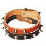 Une ligne argentée Pointu en cuir clouté collier de chien